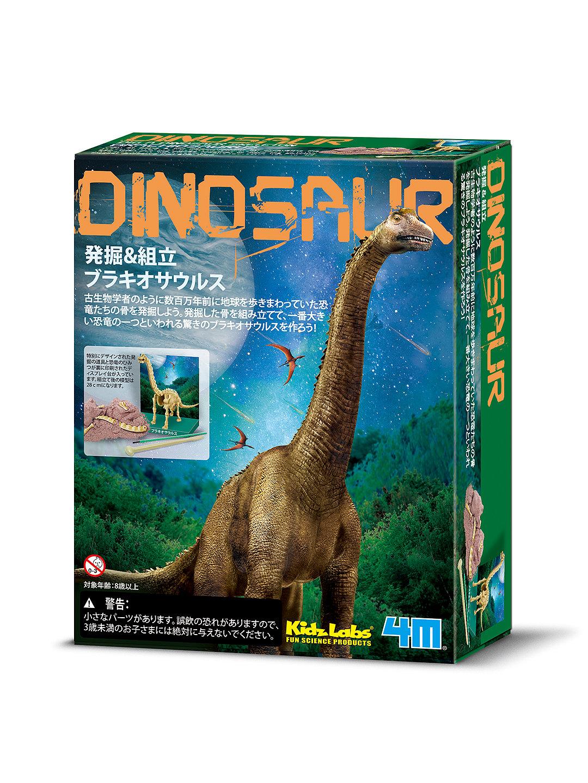 【30%OFF】発掘&組立 ブラキオサウルス(骨格標本) ゲーム・おもちゃ > その他